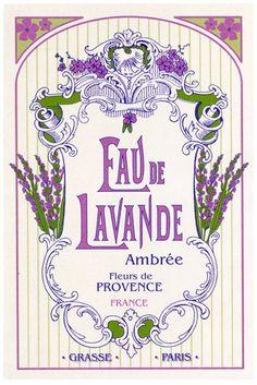 Eau de Lavande Ambrée - Fleurs de Provence