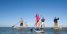 Top 10 Things to do on a Paradise Coast honeymoon | Honeymoons.com