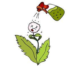 Get rid of wild herbs in a natural way . Garden Pests, Garden Planters, Garden Art, Garden Ideas, Bug Spray Recipe, Weed Killer Homemade, Home Landscaping, Farm Gardens, Natural
