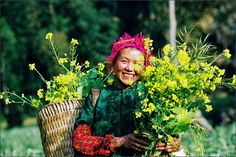 Sapa trekking tours from Hanoi offer everything about trekking tours in Sapa Vietnam, including hiking, trekking and family travel packages. Vietnam Destinations, Vietnam Tours, Vietnam Travel, Voyage Laos, Vietnam Voyage, Chau Doc, Can Tho, Hoi An, Circuit Voyage