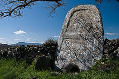 Sa Pedra Covaccada - Torralba  La stele in calcare inglobata nel muro a secco  10 minuti dal B&B...