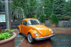 1974 Volkswagen Beetle Image  This is such  perfectly BEAUTIFUL example of the 1974 VW Beetle, complete with white wall tires and all. Love It SOOO much. I want one !