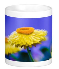 Yellow Flower Blue Background #msqrd2 Photo Credit: Michael Moriarty Photography  Available here: http://www.zazzle.com/yellow_flower_blue_background_mugs-168032240338495997