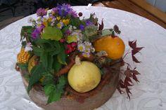 Make Your Indoor Fairy Garden