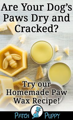 Doggy paws are sensitive things and can become dry and cracked. Try our Homemade Paw Wax recipe to give your dog's paws some relief! Best Treats For Dogs, Frozen Dog Treats, Dog Shampoo, Homemade Dog Treats, Dog Care Tips, Dog Paws, Big Dogs, Small Dogs, Dog Food Recipes