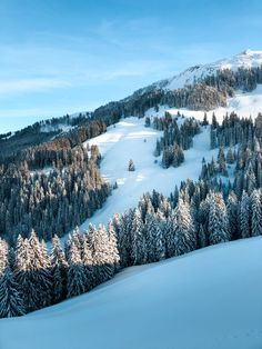 Looking for the best places to ski in Europe? Skiing in Tirol Austria offers the beautiful alp views at a much lower prices. Ski Austria, Austria Winter, Tirol Austria, Austria Travel, Wachau Valley, Jackson Hole Skiing, Best Ski Resorts, Best Skis, Ski Season