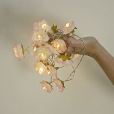 20 Ivory And Pink Rose Flower Fairy String Warm White LED Lights, Bedroom  Decoration, Wedding Centerpiece, Girl Birthday Gift | Pink Bedrooms, Rose  Flowers ...