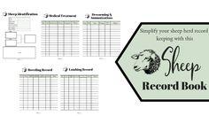 Sheep Record Book | Faithful Farmwife Recorded Books, Sheep, Faith, Homestead, Barn, Converted Barn, Loyalty, Barns, Shed