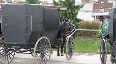 Ohio Amish Country - Christine B. © 2010