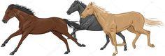 Siyah, kahverengi ve birbirlerine karşı bir palomino at çizimi
