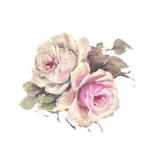 160 Best A Rose Is A Rose Images Decoupage Paper Laminas Vintage