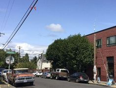Hundreds of phallic sex toys have been seen hanging in recent days from power lines across Portland, Oregon, provoking laughter, blushing and lots of photos.  The large white and bright orange dildos appear to have been strung together in pairs, and have prompted numerous reports to the Portland Office of Neighborhood Involvement  - Yahoo News