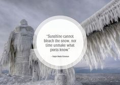 Community Post: 25 Beautiful Quotes About Snow Snow Quotes, Winter Quotes, Snow Bunnies, Great Words, Chalkboard Art, Best Quotes, Nice Quotes, Awesome Quotes, Funny Cards