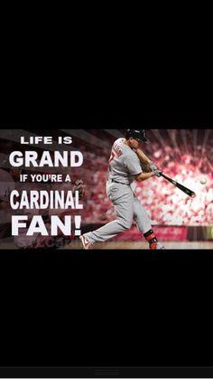 So true! I love some Cardinals Baseball!