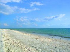 Sanibel, Florida beach