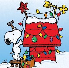 Snoopy - A Charlie Brown Christmas Peanuts Christmas, Christmas Cartoons, Charlie Brown Christmas, Christmas Movies, Christmas Art, Christmas Lights, Christmas Characters, Snoopy Love, Snoopy Und Woodstock