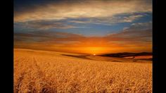 Praise To The Lord The Almighty ~ Hymn sung by the London Philharmonic C...