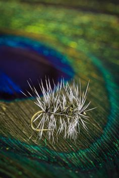 Griffith's Gnat dry fly from FlyTyingArchive.com fly tying blog.  #flytying #flyfishing