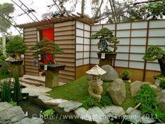 79 Best Bonsai Garden Images On Pinterest