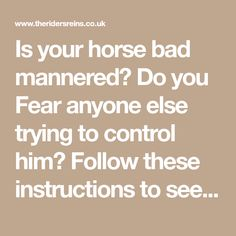 Is your horse bad mannered? Do you Fear anyone else trying to control him? Follow these instructions to see the benefits of having a well mannered equine!