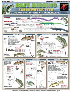 Bait Rigging and Knot Tying techniques for Inshore Freshwater Bass, Catfish and . - Bait Rigging and Knot Tying techniques for Inshore Freshwater Bass, Catfish and Crappie -