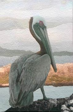 Landscape art quilt a Brown Pelican was created from several scense from the Galapagos Islands by Barbara Barrick McKie