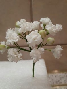 My first sugar fillers - by Katty Icing Flowers, Gum Paste Flowers, Fondant Flowers, Clay Flowers, Sugar Flowers, Gypsophila, Sugar Paste, Pasta Flexible, Air Dry Clay