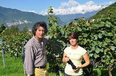 Michela Baldessari in her Pinot Noir Vineyard in Valsugana, Trentino