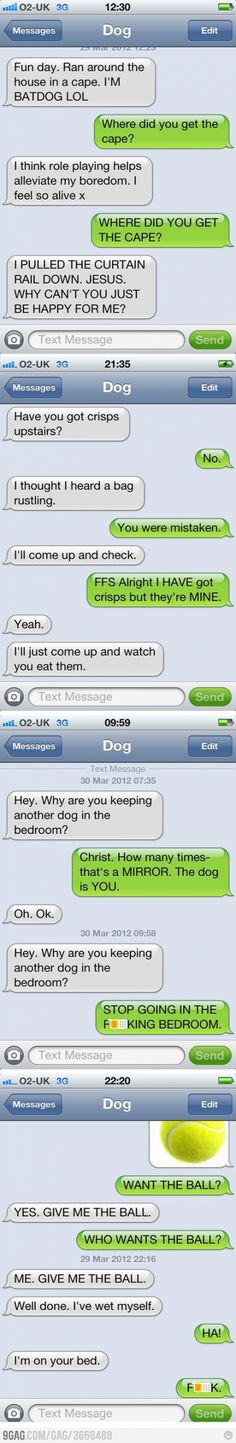 If only dogs could text...