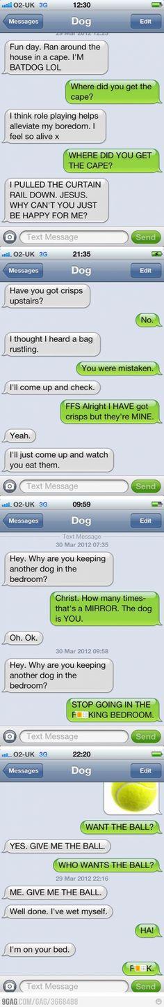 Batdog!  LOL