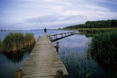 Colorvision (F1 Online) - See Schilf Steg Mann Angler angeln Panorama Holzsteg Wald Ufer Seeufer Entspannung Freizeit Landschaft Angel Ruhe Erholung    - Fotoprint günstig kaufen - auch auf Rechnung!