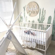 61 Best Finds for a Cactus Nursery Theme - Chaylor & Mads