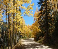 West Elk Loop Scenic & Historic Byway, Gunnison-Crested Butte, CO #bmc_fallcolors