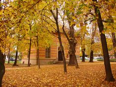 The town square in Spittal, Austria, in the fall. Central Europe, Slovenia, Czech Republic, Hungary, Austria, Bucket, Germany, Country Roads, Journey
