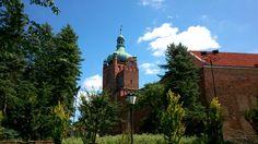 katedra Płock foto M.J.