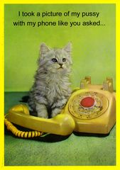 Funny and rude card by Kiss me Kwik - My pussy with my phone | Comedy Card Company | Funny Birthday Cards | Humorous Cards