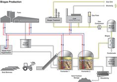 Biogas Production | Biogas Production Process