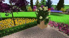 Návrh revitalizace zahrady u okálu na Pardubicku Sidewalk, Plants, Walkway, Flora, Plant, Walkways, Planting