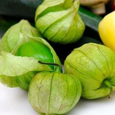 "50 Seeds, Tomatillo ""Grande Rio Verde"" (Physalis ixocarpa) Packaged By Seed Needs"