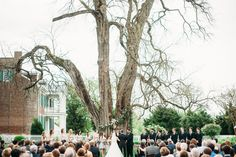 Carnton Wedding under the Osage Orange Tree // Franklin, TN Wedding Flowers
