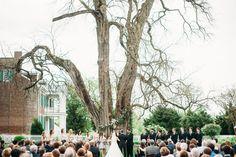 Carnton Wedding under the Osage Orange Tree // Franklin, TN Wedding Flowers
