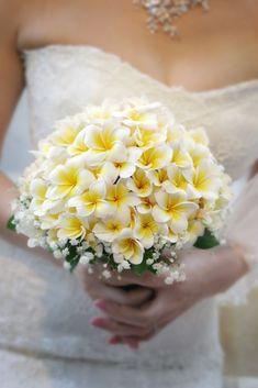 735 Best Bridal Dresses Bouquets Images In 2020