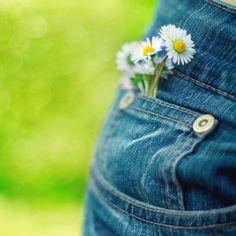 Pretty pretty daisy