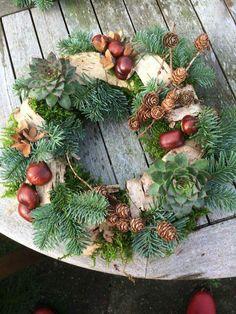 Christmas Wreaths, Succulents, Wreath Ideas, Holiday Decor, Plants, Vintage, Home Decor, Xmas, Holiday Wreaths