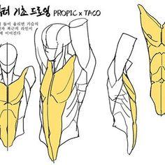 Drawing Skills, Drawing Lessons, Drawing Poses, Drawing Techniques, Drawing Tips, Body Anatomy, Anatomy Art, Anatomy Drawing, Figure Drawing Reference