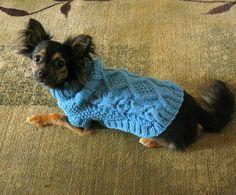 free dog sweater on ravelry