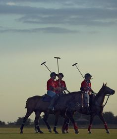 Playing Polo, the Sport of Kings, In Argentina