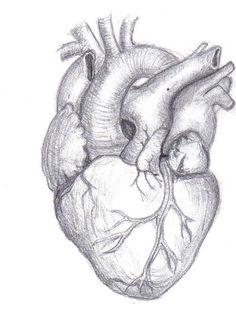 broken heart pencil drawing - Iskanje Google