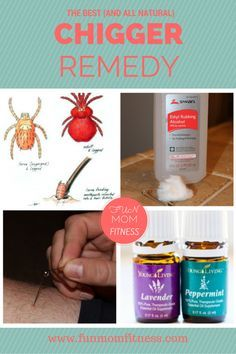 13 best how to get rid off chiggers images on pinterest chigger repellant home remedies and. Black Bedroom Furniture Sets. Home Design Ideas