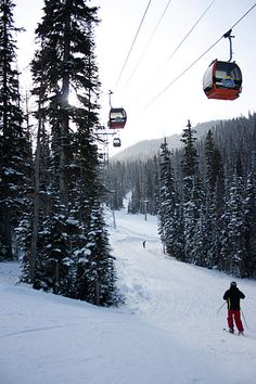 Sunshine Village | November 18, 2011 - Sunshine Village - Picasa Web Albums Banff
